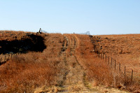 Early Spring in the Flint Hills - Tallgrass Prairie Reserve