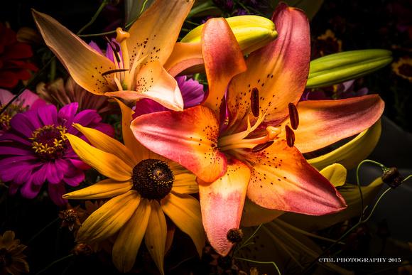 Broadmoor garden-1
